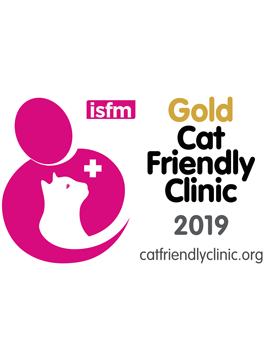Gold award for Cat Friendly Clinics